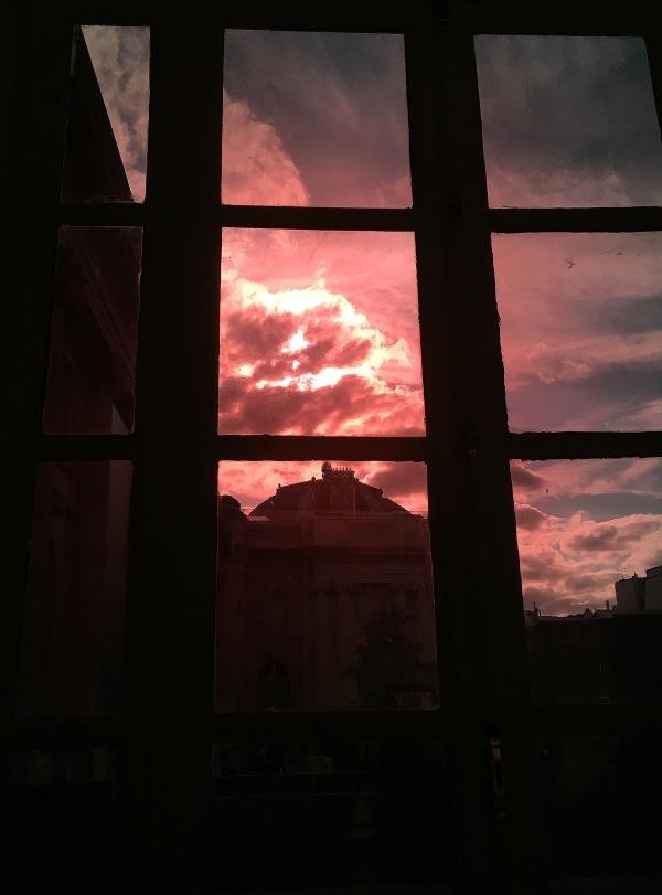 Le rose du Grand Palais