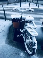 Snow on Paris, Paris, neige , bike, velo