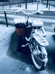 Snow on Paris, Paris, neige , bike, velo