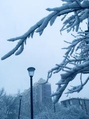 Snow on Paris, Paris, neige , sky ,