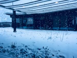 Snow on Paris, Paris, neige